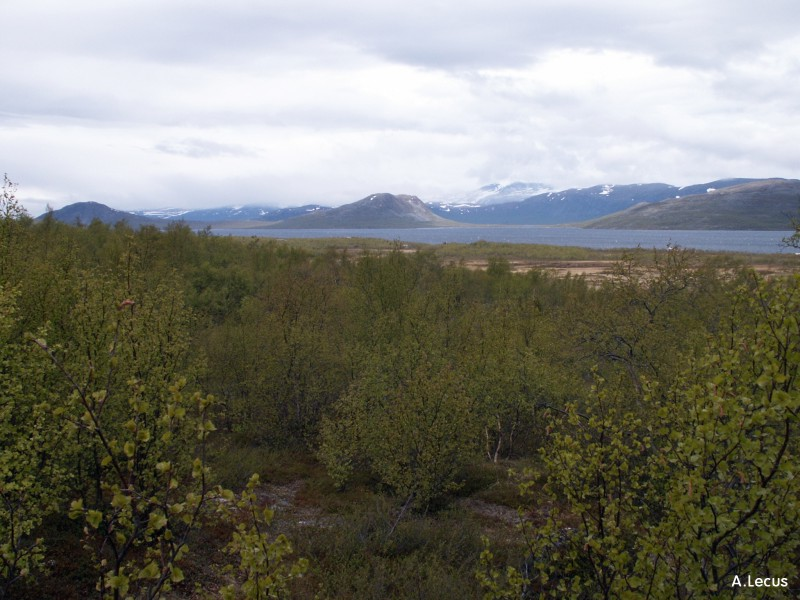 Lac Tornesträk