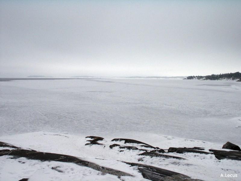 Mer gelée