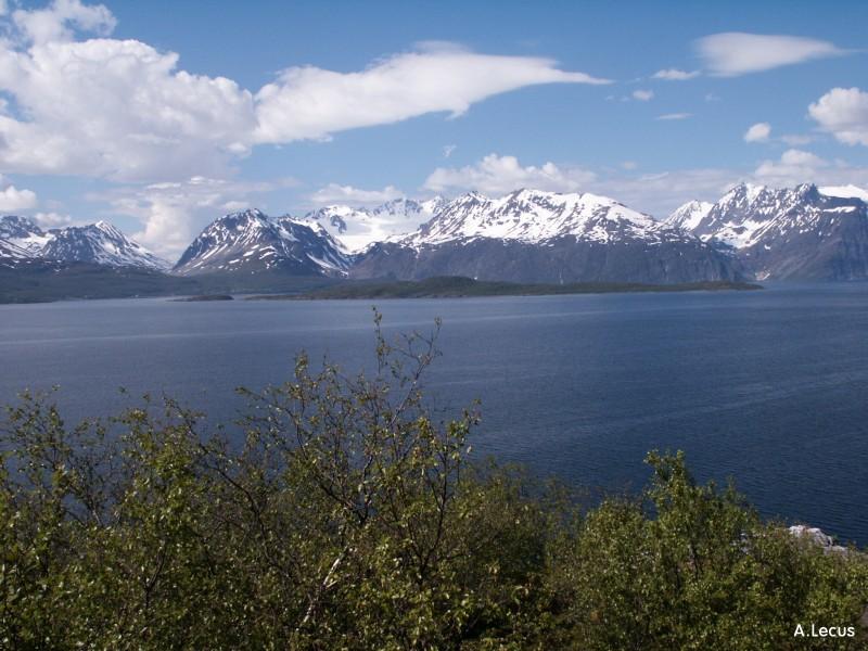 http://www.objectif-suede.com/Images/grd_format/Norvege/Tromso/montagne_fjord3.jpg
