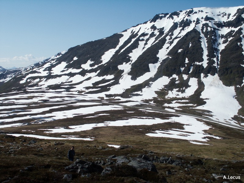 Paysage arctique